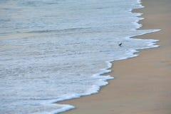 Oceanside Stock Photography
