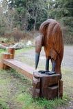Oceanside Drewniany cyzelowanie Czapli łasowanie łosoś Zdjęcia Royalty Free