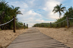 Oceansideweg aan een tropisch strand Royalty-vrije Stock Afbeeldingen