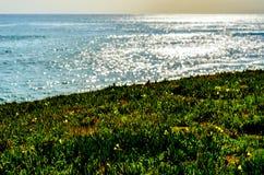 Oceanu świecenie fotografia royalty free