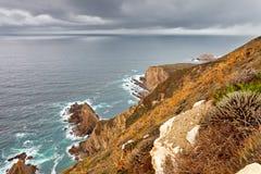 oceanu duży brzegowy sur Obraz Royalty Free