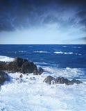 oceanu dziki burzowy Fotografia Royalty Free