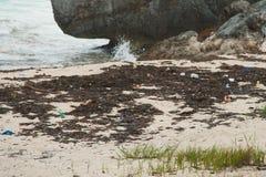 Oceanu klingeryt na brzeg obrazy stock
