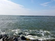Oceanu popiół zdjęcie stock