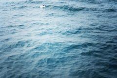 Oceanu wodny tło Obraz Stock