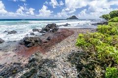 Oceanu wybrzeże w Hawaje Fotografia Stock