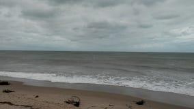 Oceanu życia Floryda pogoda Zdjęcia Stock
