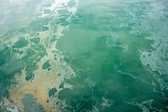 Oceanu zanieczyszczenie Zdjęcia Royalty Free