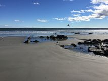 Oceanview δύσκολη ακτή Στοκ Εικόνες