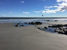 Oceanview 岩石岸 库存照片