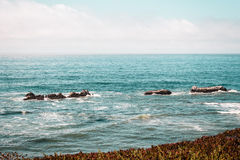 Oceanview da costa de Califórnia, Estados Unidos Foto de Stock Royalty Free