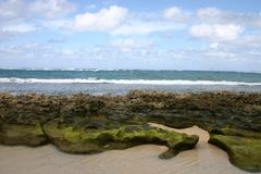 Oceanview hawaiano foto de archivo
