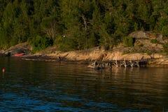 Oceanview in Noorwegen Royalty-vrije Stock Foto