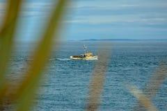Oceanview od blefu wzgórza punktu obserwacyjnego, Południowy punkt w Nowa Zelandia zdjęcie stock