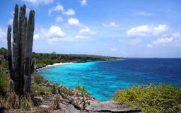 Oceanview. View over a little bay in Bonaire, Dutch Antilles Royalty Free Stock Image
