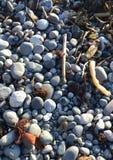 Oceany będący ubranym kamienie francuz plaża, BC Obraz Stock