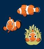 Ocellaris Clownfish动画片传染媒介例证 库存照片