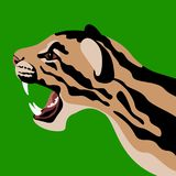 Ocelot cat head vector illustration style flat profile. Side Stock Photo
