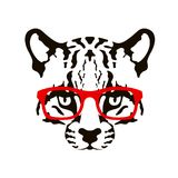 Ocelot face in glasses vector illustration flat. Style Royalty Free Stock Images