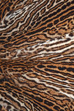 Ocelot skin Royalty Free Stock Photos