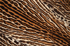 Ocelot skin pattern Stock Photography