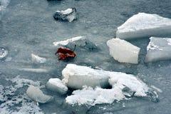 Is och blad fotografering för bildbyråer