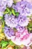 Och Violet Flowers Bouquet Of Pink Arkivbilder