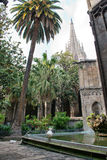 Oche bianche in cortile della cattedrale di Barcellona fotografia stock