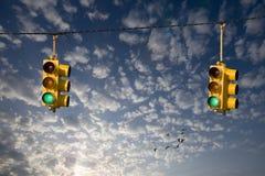 Oche e semafori Immagine Stock