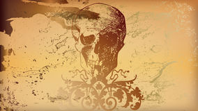 Ocher skull Royalty Free Stock Photos