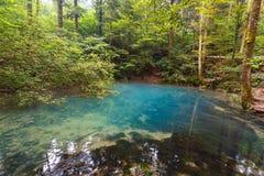 Ochiul Beiului lake in Romania Royalty Free Stock Photo
