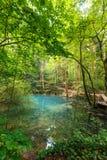 Ochiul Beiului lake in Romania Stock Image