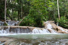 Ocho Rios, Jamaïca Stock Fotografie