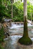 Ocho Rios, Jamaika Stockbilder