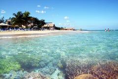 Ocho rios reef Stock Photo