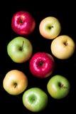 Ocho rojos, verdes y amarillas manzanas con agua cae en el CCB negro Imágenes de archivo libres de regalías