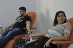 Ochotnicze krwionośne darowizny dla 184 raniącego w Bucharest Colectiv klubu nocnego ogieniu Zdjęcia Royalty Free
