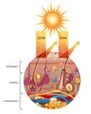 Ochraniająca skóra z sunscreen płukanką ilustracji