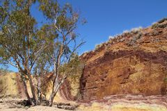 Ochre κοιλώματα γύρω από τους βασιλιάδες φιλιών κολπίσκου πυρών προσκόπων της Αυστραλίας που γίνονται το νέο βόρειο έδαφος σταθμώ Στοκ φωτογραφία με δικαίωμα ελεύθερης χρήσης