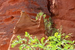 Ochre colored rocks near french village Roussillon Royalty Free Stock Photo