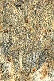 Ochre and Felspar with Garnets. Closeup of a piece of stone found in the austrian alps shows fine detail of many various minerals with whithered garnets. Pattern Stock Images