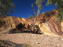 Ochre lined wall and tree a the dry creek. At the McDonnell Ranges, Alice Springs, Australia, July 2015 Royalty Free Stock Photos