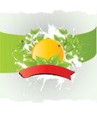 ochrona środowiska szablonu wektor Zdjęcie Stock