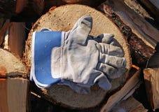 Ochronne rękawiczki Zdjęcie Stock