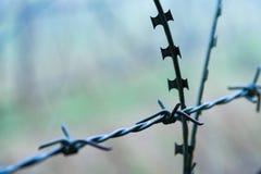 Ochronny fechtunka szczególnie ochraniający przedmiot drut kolczasty ST zdjęcie royalty free