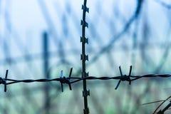 Ochronny fechtunka szczególnie ochraniający przedmiot drut kolczasty ST fotografia stock
