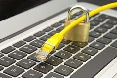 ochrony sieć zdjęcie stock