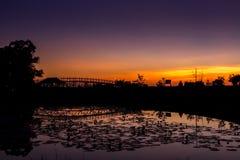 Ochtend bij rode lotusbloemoverzees, Thailand royalty-vrije stock foto's