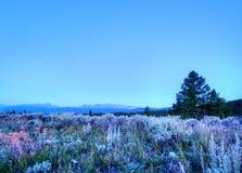 Ochtend in Colorado Rockies royalty-vrije stock foto's