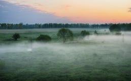 Ochtend Dawn in een weide Stock Foto's